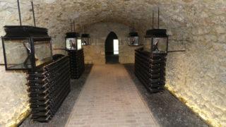 Globus VIP trip to Champagne, Dom Perignon and Ruinart