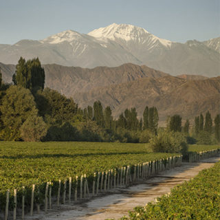 Cheval des Andes, the Grand Cru from the Andes mountain