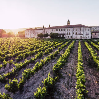 sunset at abadia retuerta ledomaine