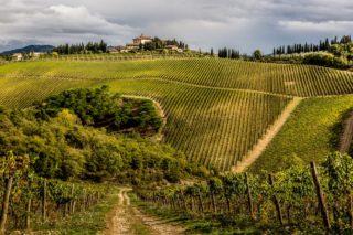 Frescobaldi Toscana, a Chianti with class, Tenuta Perano